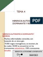 TEMA 4 Herencia Autosomica Dominante y Recesivo