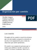 Organización-por-comités.pptx