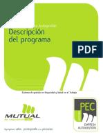 Descripcion Programa Pec Autogestion