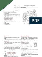 FOLLETO-Respuestas-de-La-Misa.pdf