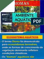 Eco Au Labio Mas Aquatic o
