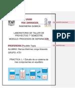 L1 Eduardo.docx
