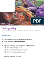 cell signalling 1.2 2017.pptx