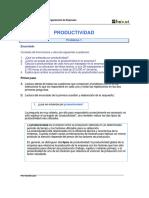 productividad 1.pdf