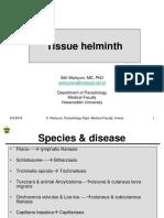 3 Tissue Helminth1_filariasis