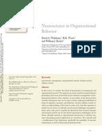Waldman, Ward, Becker - 2017 - Neuroscience in Organizational Behavior - Ssrn.pdf