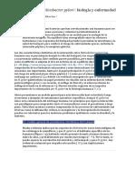 S5. Traducción lectura- Persistencia de Helicobacter pylori  (1).docx