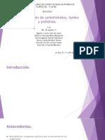 Determinación de Carbohidratos, Lípidos y Proteínas