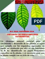 Funciones y deficiencias de nutriciones en la planta