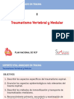 SVAT_08.pdf
