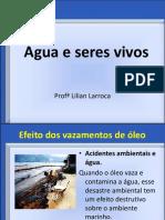 Atividade de Ciencias a Importancia Da Agua Respostas