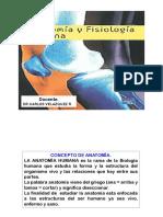 01. Anatomia Osteologia