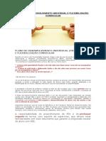 Plano de Desenvolvimento Individual e Flexibilização Curricular