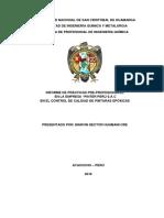 Informe de Practicas Preprofesionas 1.1ENTREGAR