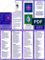 DECRETOS.pdf