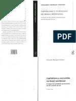 Fernando Henrique Cardoso - Capitalismo e Escravidão No Brasil Meridional