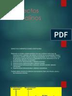 4 PresentacionUnidad(4)