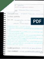 aula 4.pdf