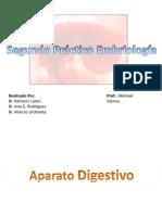 Segundo Practico Embriologia.pdf