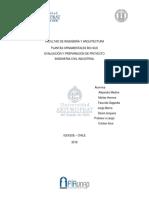 informe evaluacion de proyectos.docx