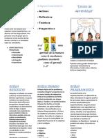 190384361-Triptico-de-Estilos-de-Aprendizaje-Docx.pdf