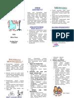 #Leaflet-Asam-Urat.doc