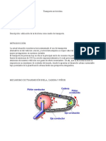 informe tecnico-mecanismo