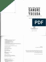 332476981-Miguel-Angel-Centeno-Sangre-y-Deuda.pdf