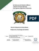 Guía de Evaluación Producción y Tecnología de Semillas