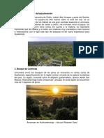 Bosques de Guatemala