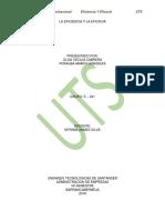 Teoria y Diseño Organizacional Trabajo