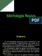 Morfología flexiva