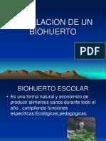 22255289 Instalacion de Un Biohuerto