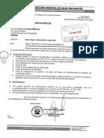 DIRESA San Martín.pdf