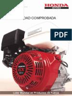 FT Motores GX m.pdf