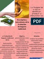 Descripción y Antecedentes de La EvaluaciónDe Impacto Ambienta (2)