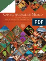 AccionesEstrategicas_web.pdf