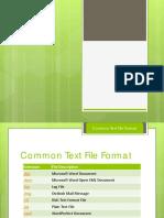 20_FileFormat