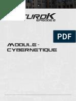 Mod-Cyber