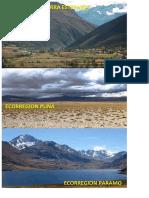 Ecorregión de Sierra - Imagen
