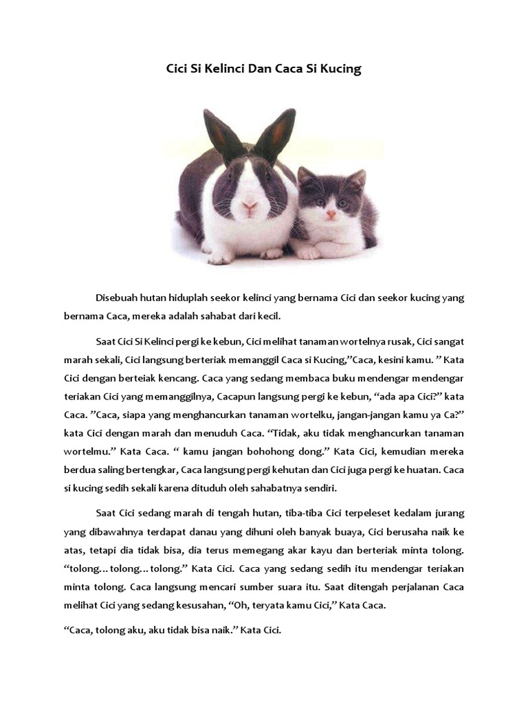 Cici Si Kelinci Dan Caca Si Kucing docx
