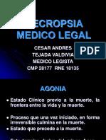 Necropsia de ley11.ppt