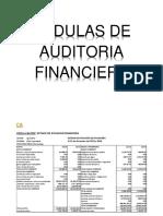 Grupo 2 Trabajo de Finanas Corporativas