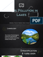 Water Pollution in Lakes