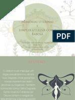 Memórias uterinas.pdf