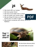 Slugs PowerPoint Lynn Neely