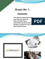 Presentacion Ric y Renap