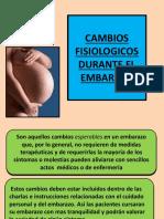 Cambios Fisiologicos Durante El Embarazo 1