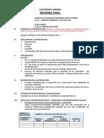 CONTENIDO INFORME FINAL.pdf