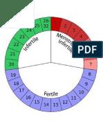 menstrual cycle.docx